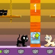 Game Mèo đẩy gạch