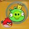 Game Phi đội Angry Birds