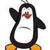 Game Săn chim cánh cụt