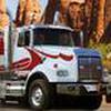 Game Đậu xe tải nặng