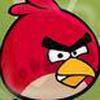 Game Angry Bird Truy Tìm Trứng