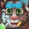 Game Chăm Sóc Mèo Tom