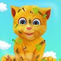 Mèo Ginger Nghịch Ngợm