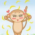 Chơi với bầy khỉ