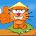 Mèo vòng quanh châu Á 3