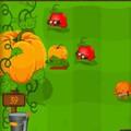 Cuộc chiến hoa quả