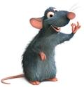 Chú chuột đưa thư