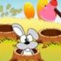 Đập thỏ