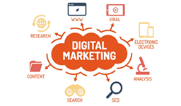 Chuyên Viên Digital Marketing