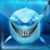 Game Cá Mập New York