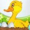 Game Vịt đẻ trứng