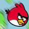 Game Sự Nổi Giận Của Loài Chim 2