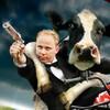 Game Nông trại bò sữa