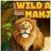 Game Mahjong châu Phi