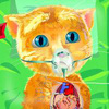 Game Ginger Phẫu Thuật Tim