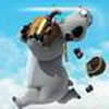 Game Gấu Backkom phiêu lưu